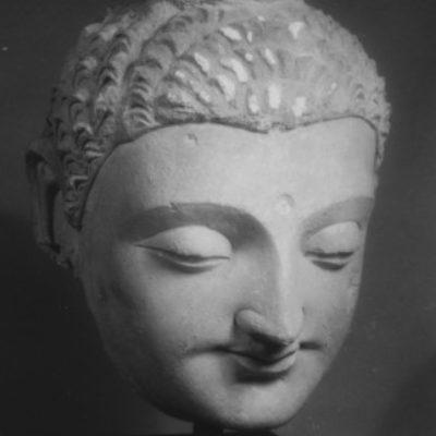 Group logo of Buddhist Studies