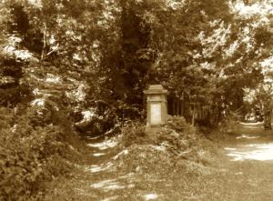 sepia paths