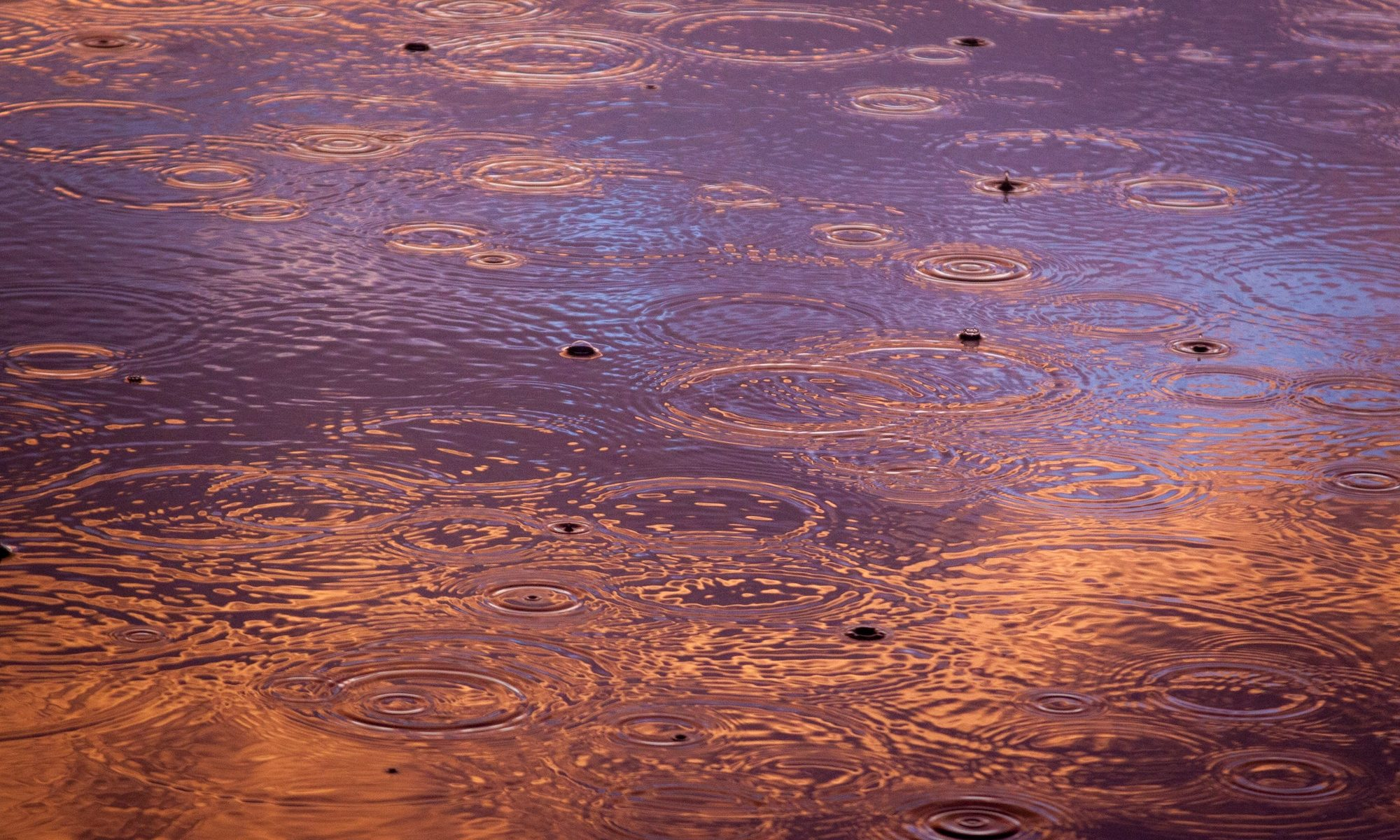 a picture of a puddle reflecting purple and orange light