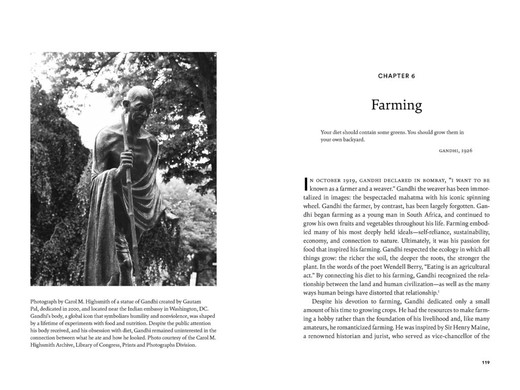 Sample spread from Ghandi's Search 1