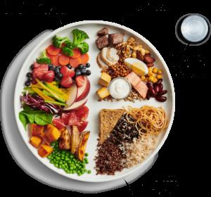 Canada Food Guide Visual - English